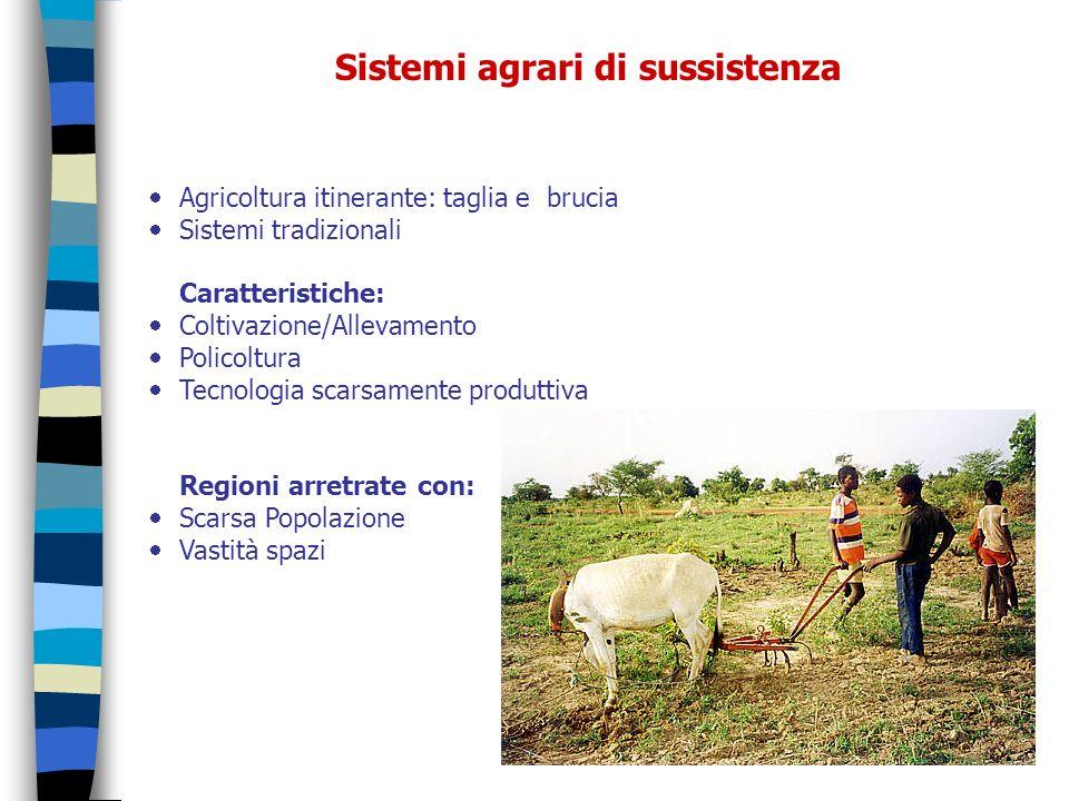 Sistemi agrari di sussistenza Agricoltura itinerante: taglia e brucia Sistemi tradizionali Caratteristiche: Coltivazione/Allevamento Policoltura Tecno