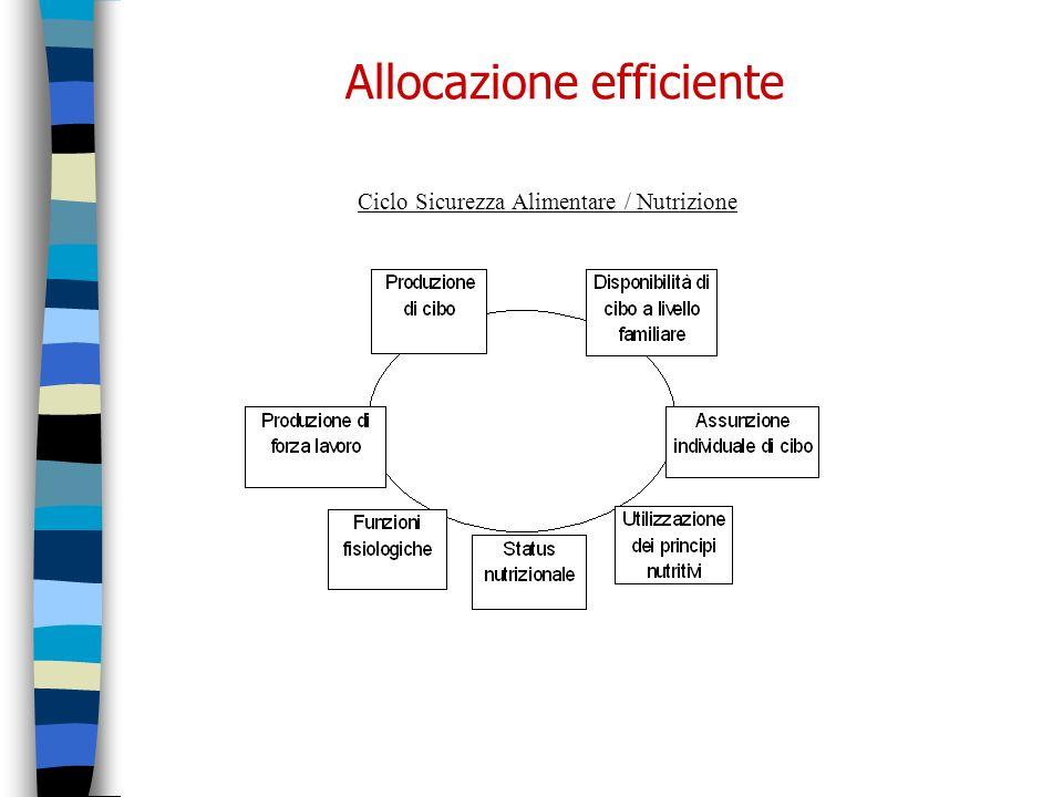 Allocazione efficiente Ciclo Sicurezza Alimentare / Nutrizione