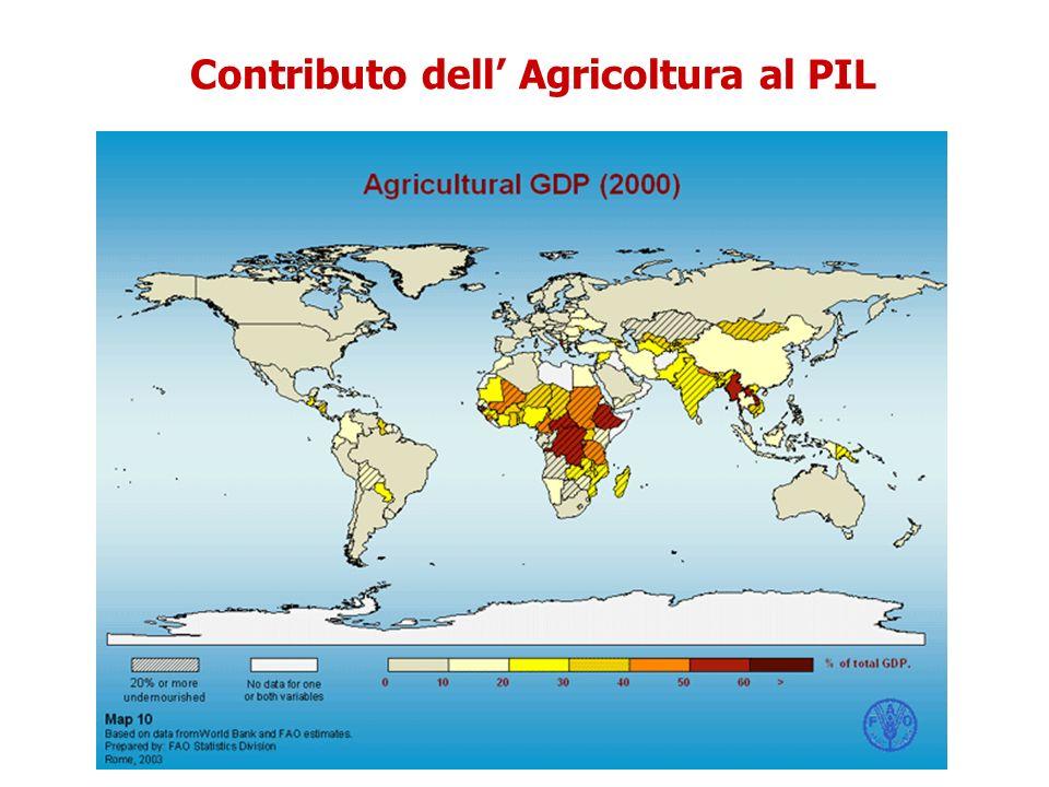 Contributo dell Agricoltura al PIL
