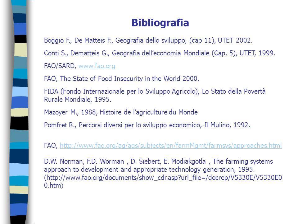 Bibliografia Boggio F., De Matteis F., Geografia dello sviluppo, (cap 11), UTET 2002. Conti S., Dematteis G., Geografia delleconomia Mondiale (Cap. 5)