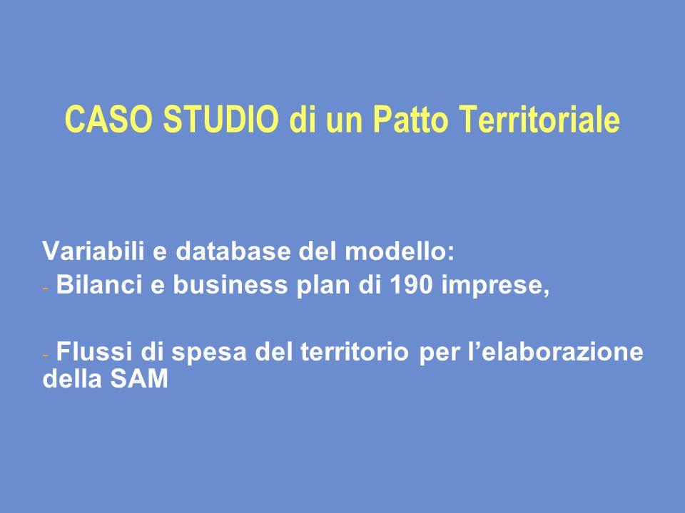 CASO STUDIO di un Patto Territoriale Variabili e database del modello: - Bilanci e business plan di 190 imprese, - Flussi di spesa del territorio per lelaborazione della SAM