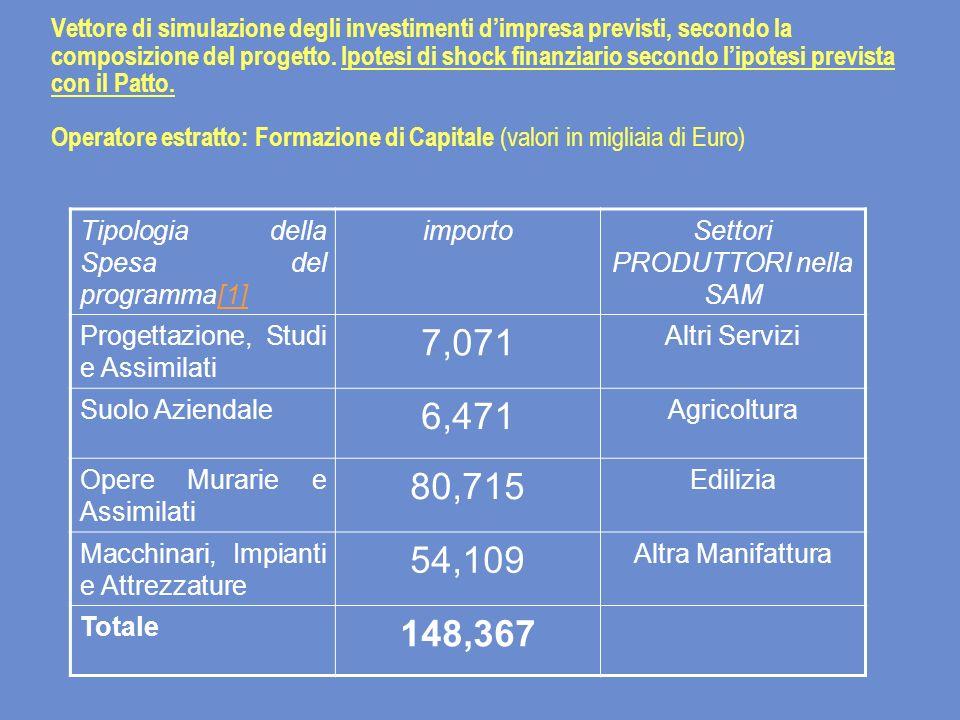 Vettore di simulazione degli investimenti dimpresa previsti, secondo la composizione del progetto.