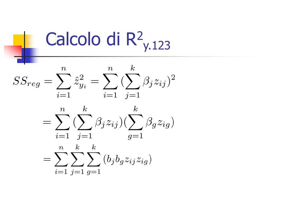 Se dividiamo per (n-1) possiamo verificare le seguenti condizioni algebriche: essendo Allo stesso modo avremo: essendo Calcolo di R 2 y.123
