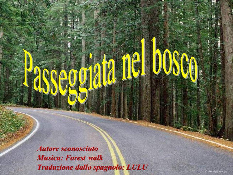 Autore sconosciuto Musica: Forest walk Traduzione dallo spagnolo: LULU