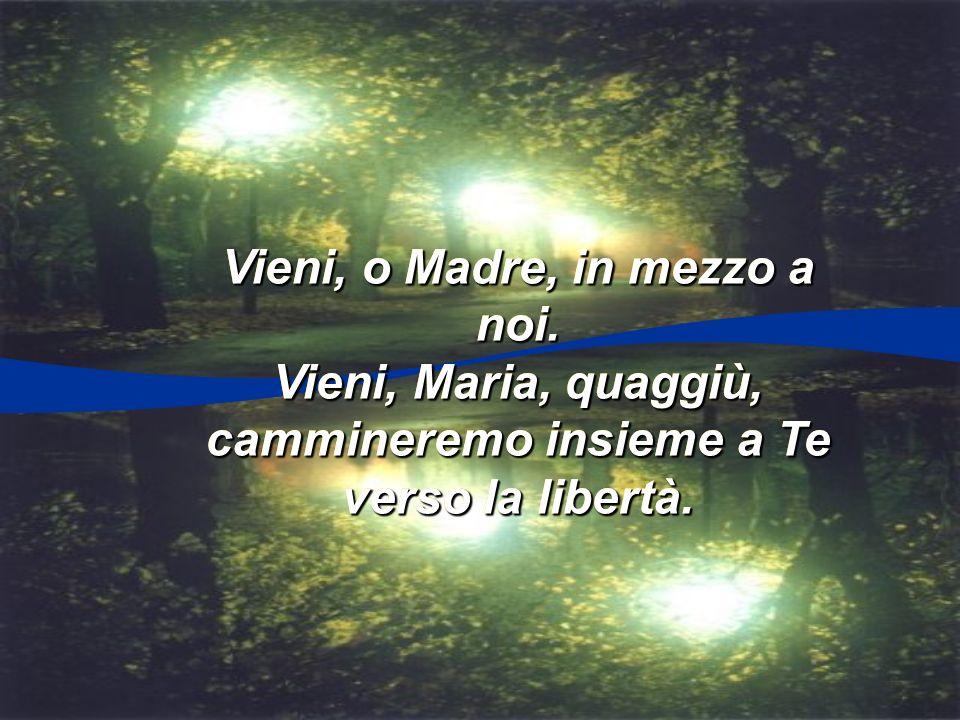 Mentre trascorre la vita solo tu non sei mai: Santa Maria del cammino sempre sarà con te.