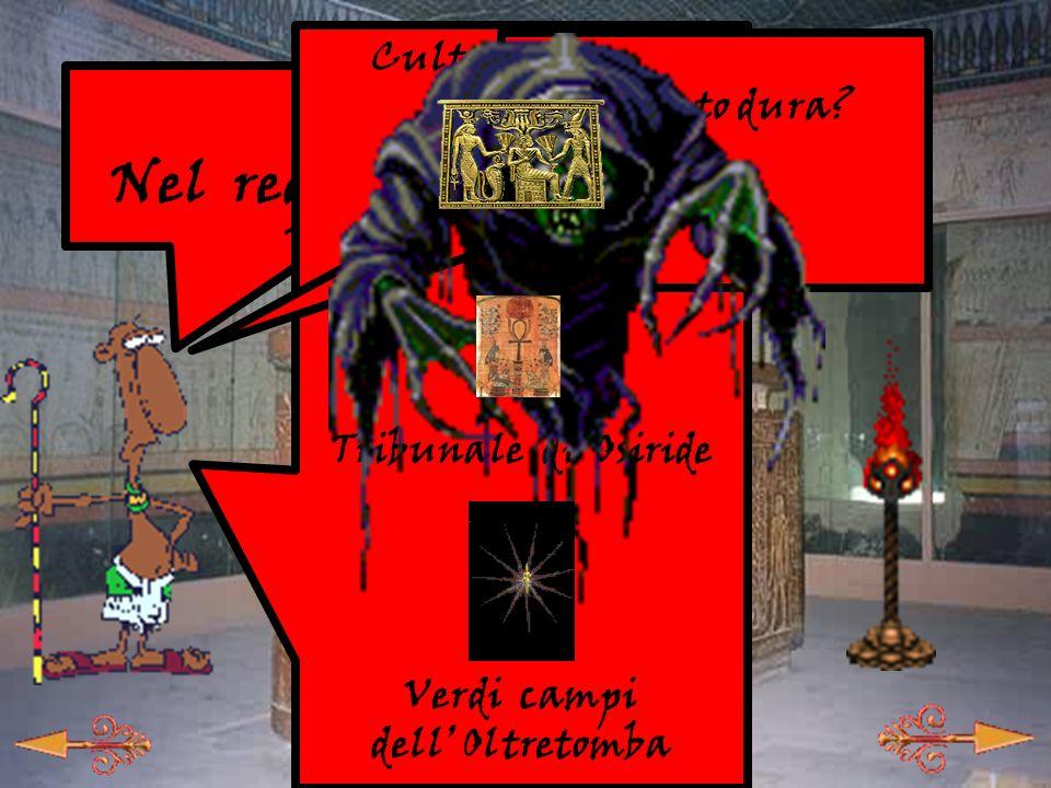 16 -1- Labs lettura -B- Animali o dei -C- Il Signore delle Due Terre -A- Nel regno di Osiride