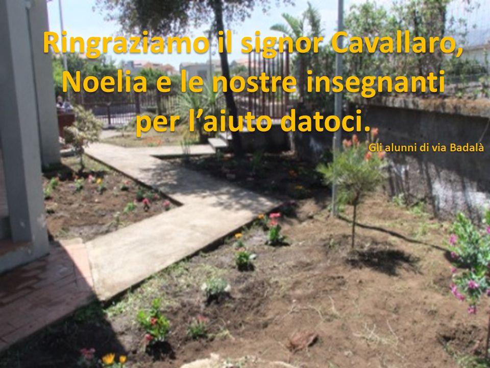 Ringraziamo il signor Cavallaro, Noelia e le nostre insegnanti per laiuto datoci. Gli alunni di via Badalà