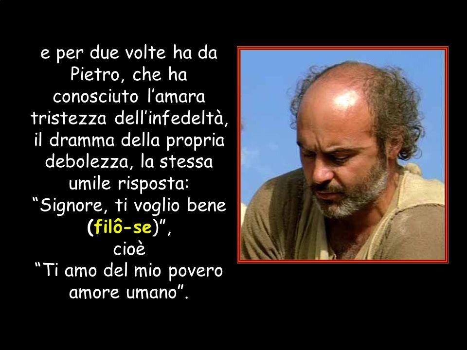 : Gesù chiede a Pietro se lo ama (agapâs-me) di questo amore incondizionato; glielo chiede due volte
