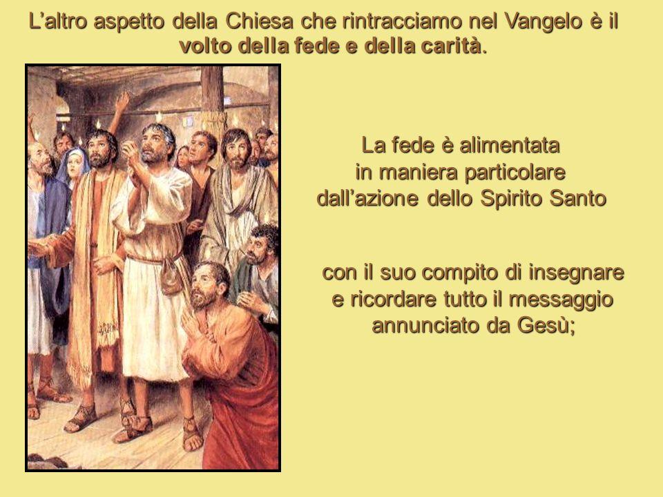 Il VOLTO DELLA CHIESA Dalla prima lettura desumiamo il volto conciliare-sinodale della Chiesa; ci è descritto infatti lo svolgimento del Concilio di G