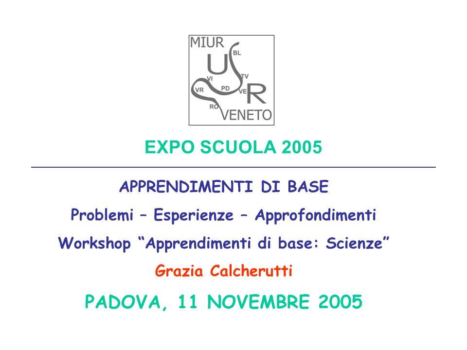 EXPO SCUOLA 2005 APPRENDIMENTI DI BASE Problemi – Esperienze – Approfondimenti Workshop Apprendimenti di base: Scienze Grazia Calcherutti PADOVA, 11 N