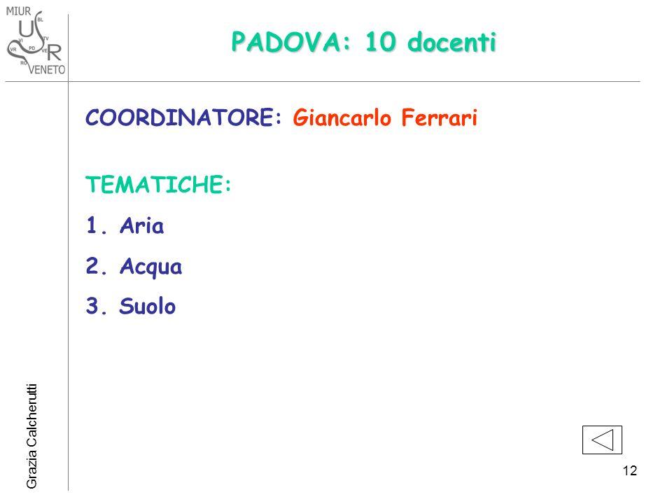 Grazia Calcherutti 12 PADOVA: 10 docenti COORDINATORE: Giancarlo Ferrari TEMATICHE: 1.Aria 2.Acqua 3.Suolo