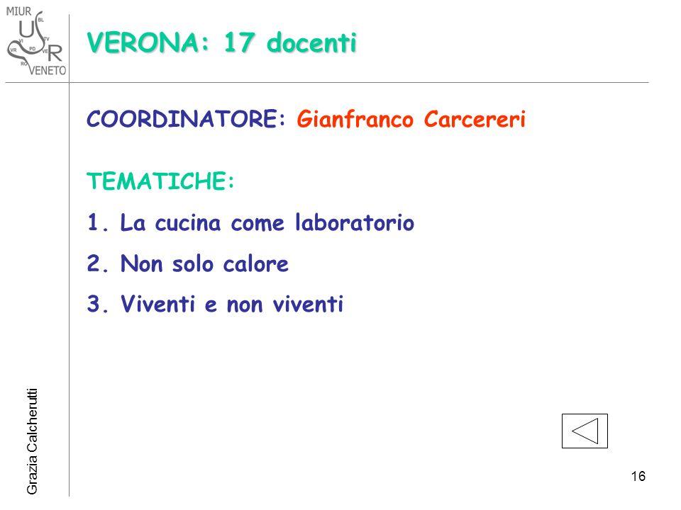 Grazia Calcherutti 16 VERONA: 17 docenti COORDINATORE: Gianfranco Carcereri TEMATICHE: 1.La cucina come laboratorio 2.Non solo calore 3.Viventi e non