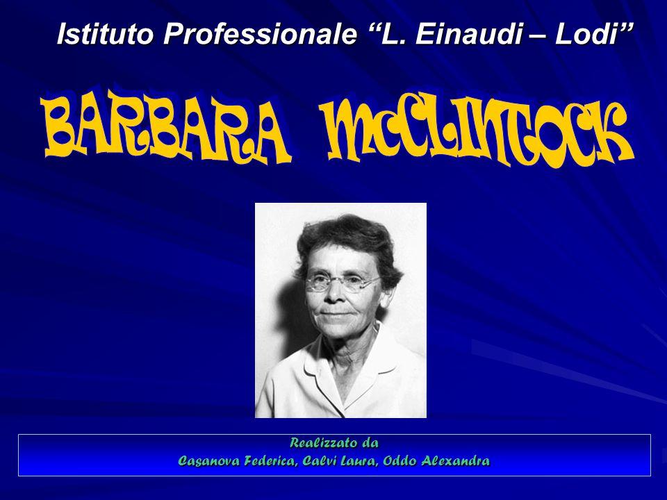 Istituto Professionale L.Einaudi – Lodi Istituto Professionale L.