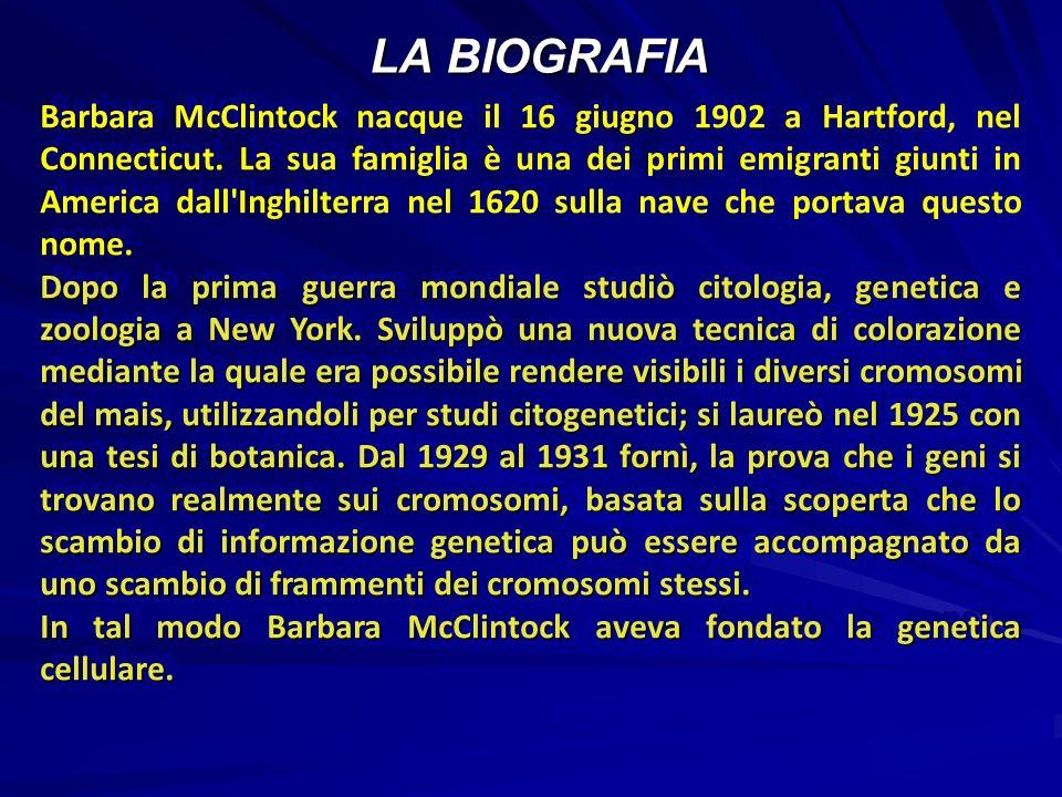 LA BIOGRAFIA Barbara McClintock nacque il 16 giugno 1902 a Hartford, nel Connecticut.
