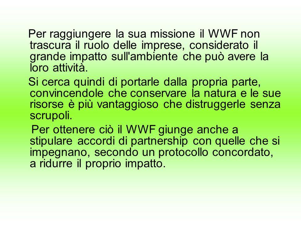 Per raggiungere la sua missione il WWF non trascura il ruolo delle imprese, considerato il grande impatto sull'ambiente che può avere la loro attività