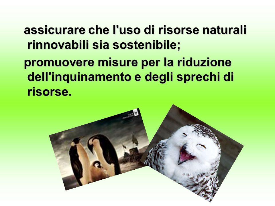 assicurare che l'uso di risorse naturali rinnovabili sia sostenibile; assicurare che l'uso di risorse naturali rinnovabili sia sostenibile; promuovere
