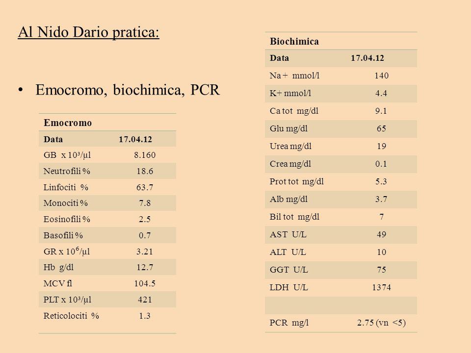 Al Nido Dario pratica: E mocromo, biochimica, PCR Emocromo Data17.04.12 GB x 10³/µl8.160 Neutrofili %18.6 Linfociti %63.7 Monociti %7.8 Eosinofili %2.