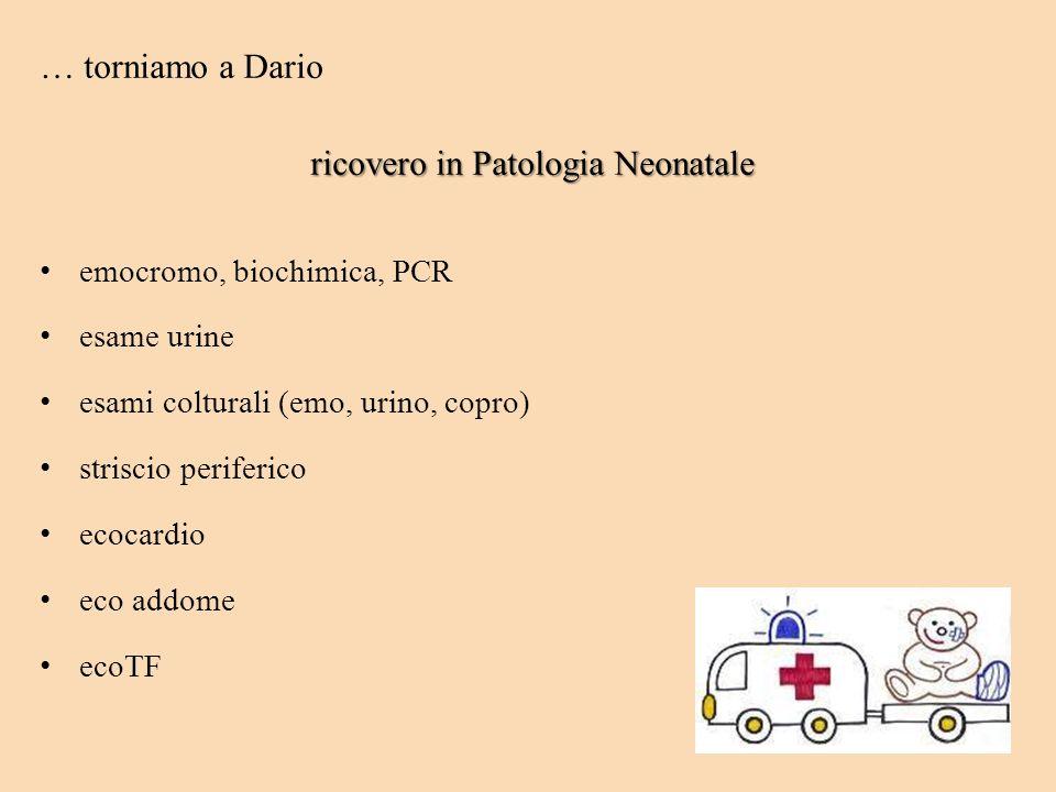 … torniamo a Dario ricovero in Patologia Neonatale emocromo, biochimica, PCR esame urine esami colturali (emo, urino, copro) striscio periferico ecoca