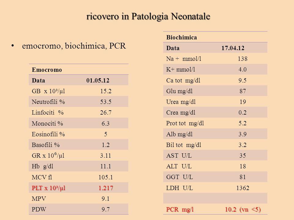 ricovero in Patologia Neonatale emocromo, biochimica, PCR Emocromo Data01.05.12 GB x 10³/µl15.2 Neutrofili %53.5 Linfociti %26.7 Monociti %6.3 Eosinof