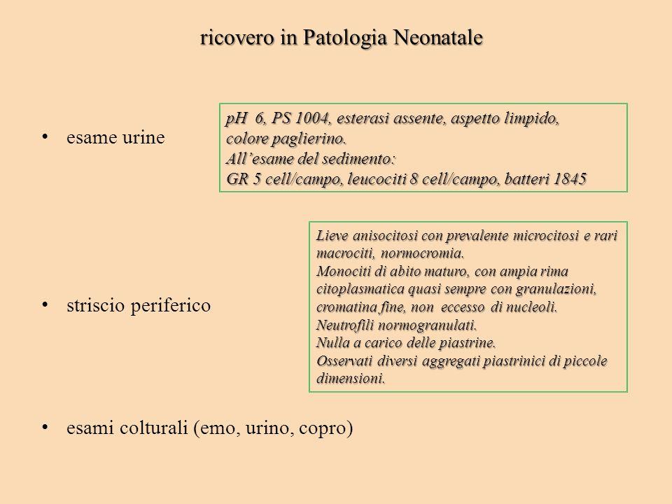 ricovero in Patologia Neonatale esame urine striscio periferico esami colturali (emo, urino, copro) Lieve anisocitosi con prevalente microcitosi e rar