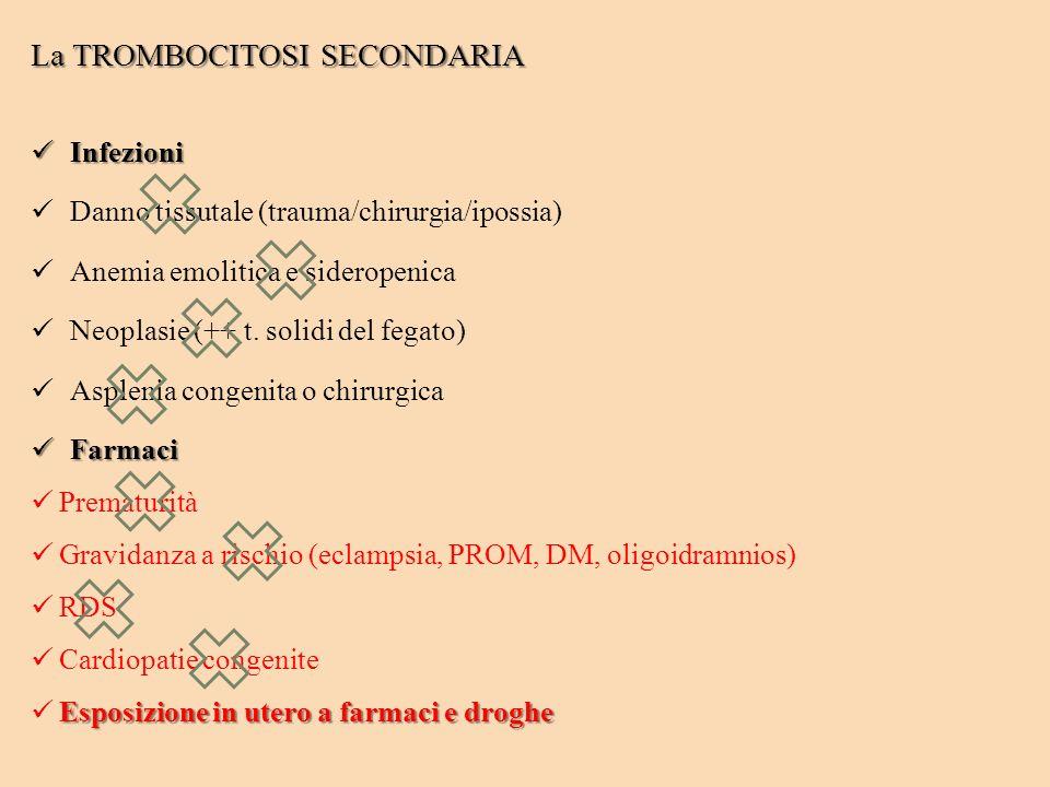 La TROMBOCITOSI SECONDARIA Infezioni Infezioni Danno tissutale (trauma/chirurgia/ipossia) Anemia emolitica e sideropenica Neoplasie (++ t. solidi del