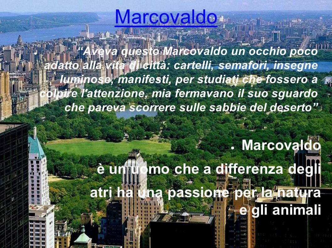 Marcovaldo Aveva questo Marcovaldo un occhio poco adatto alla vita di città: cartelli, semafori, insegne luminose, manifesti, per studiati che fossero