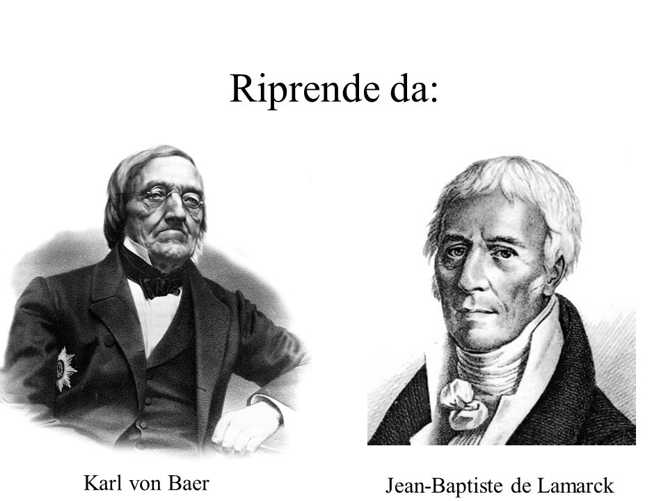 Riprende da: Karl von Baer Jean-Baptiste de Lamarck