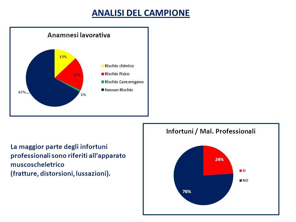 ANALISI DEL CAMPIONE La maggior parte degli infortuni professionali sono riferiti allapparato muscoscheletrico (fratture, distorsioni, lussazioni).