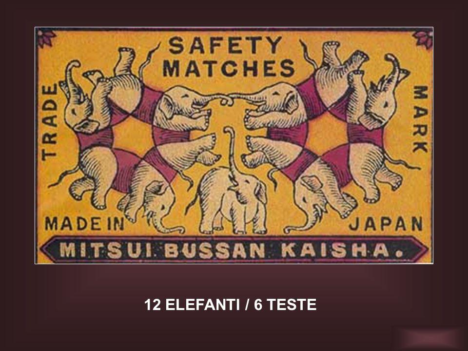 12 ELEFANTI / 6 TESTE