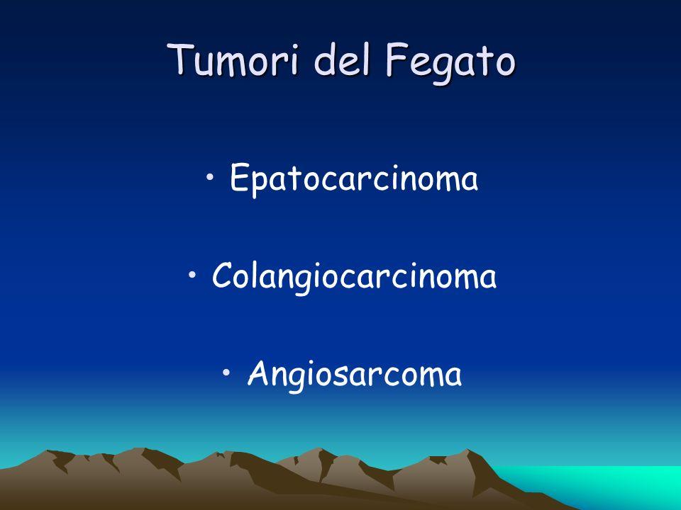 Tumori del Fegato Epatocarcinoma Colangiocarcinoma Angiosarcoma