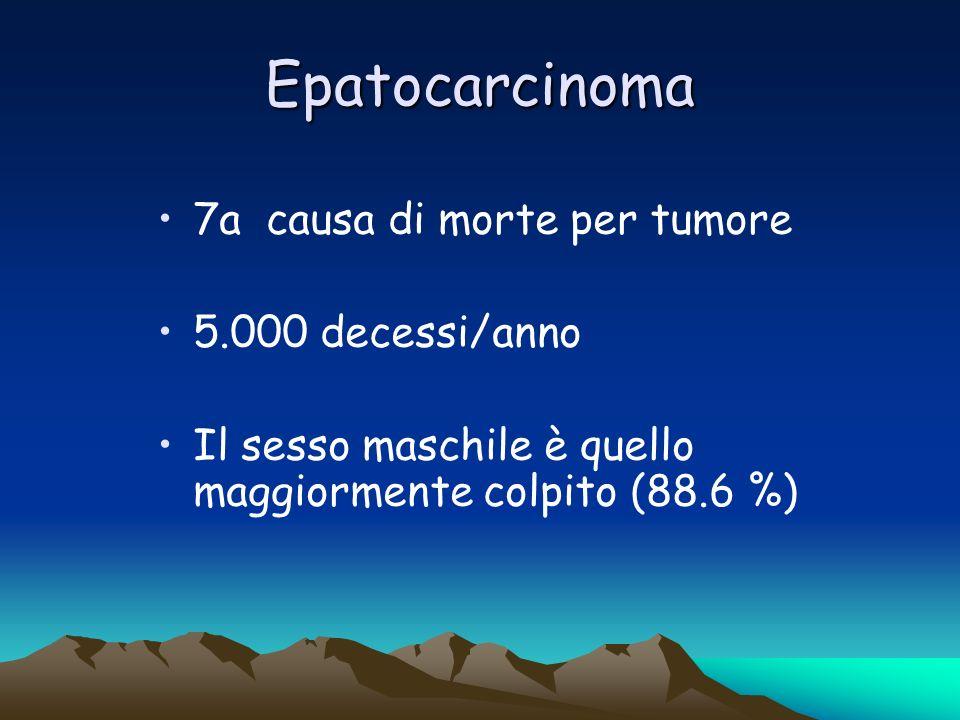 Epatocarcinoma 7a causa di morte per tumore 5.000 decessi/anno Il sesso maschile è quello maggiormente colpito (88.6 %)