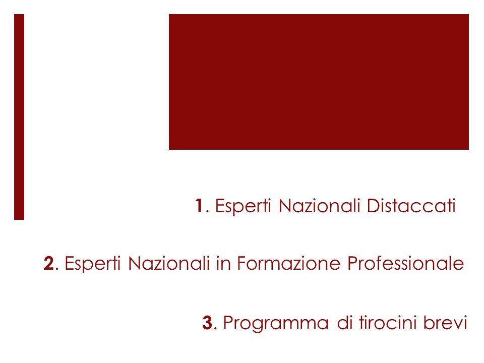 1. Esperti Nazionali Distaccati 2. Esperti Nazionali in Formazione Professionale 3. Programma di tirocini brevi