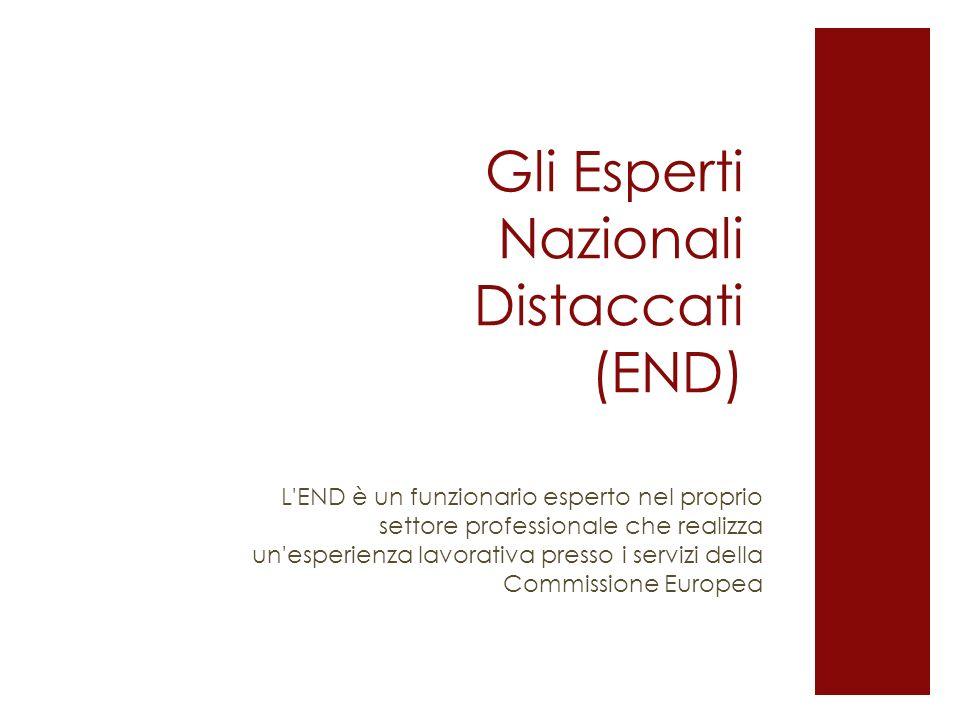 Gli Esperti Nazionali Distaccati (END) L'END è un funzionario esperto nel proprio settore professionale che realizza un'esperienza lavorativa presso i