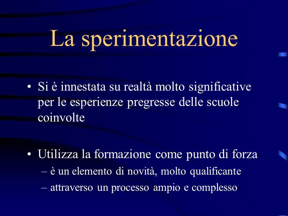 La sperimentazione Si è innestata su realtà molto significative per le esperienze pregresse delle scuole coinvolte Utilizza la formazione come punto d