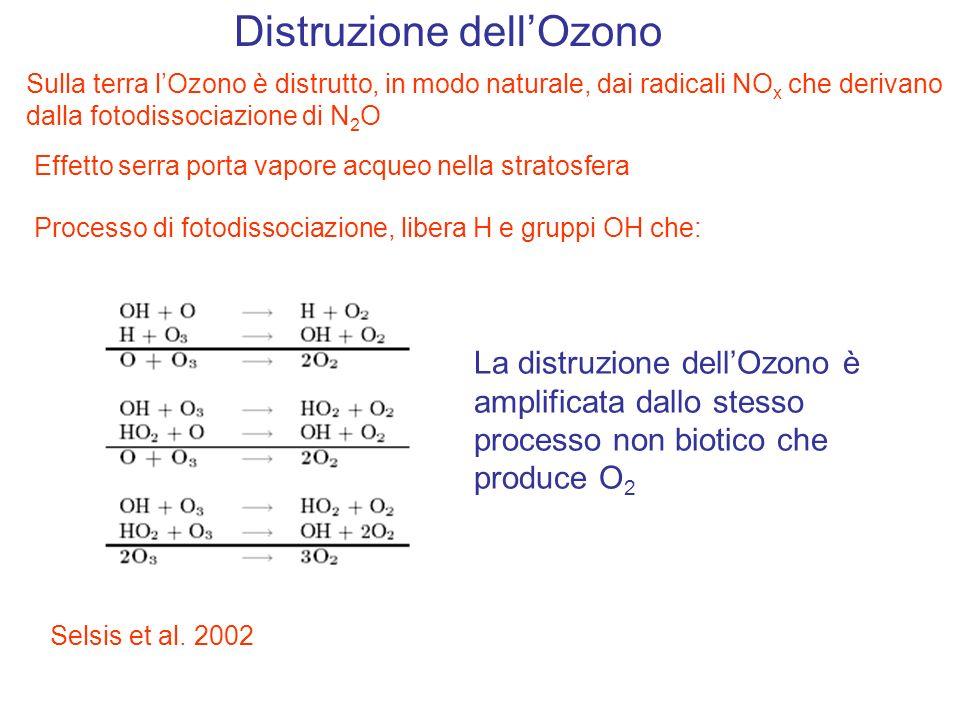 Distruzione dellOzono Effetto serra porta vapore acqueo nella stratosfera Processo di fotodissociazione, libera H e gruppi OH che: La distruzione dell