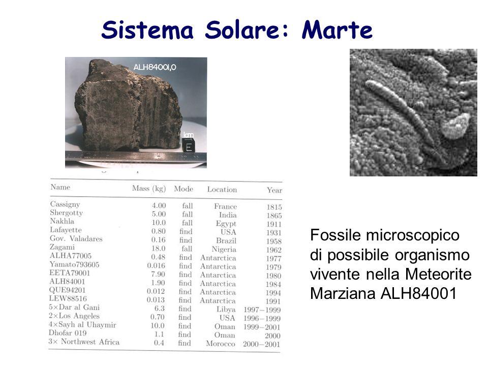 Sistema Solare: Marte Fossile microscopico di possibile organismo vivente nella Meteorite Marziana ALH84001