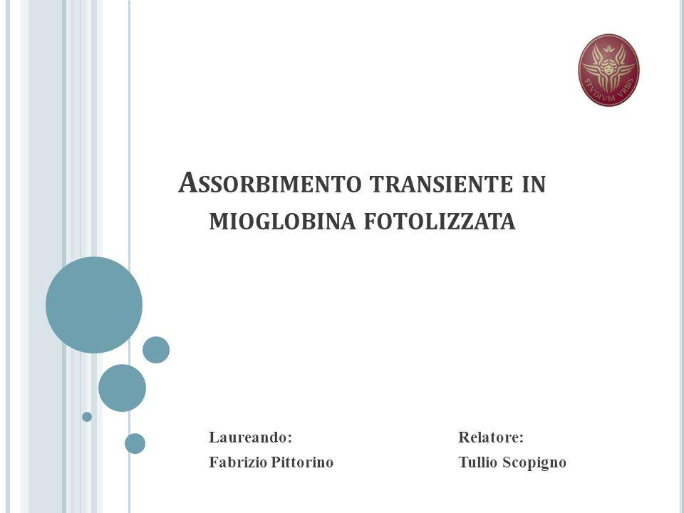 Scopo della dissertazione: studiare la cinetica ultraveloce della mioglobina in seguito alla fotodissociazione del ligando.