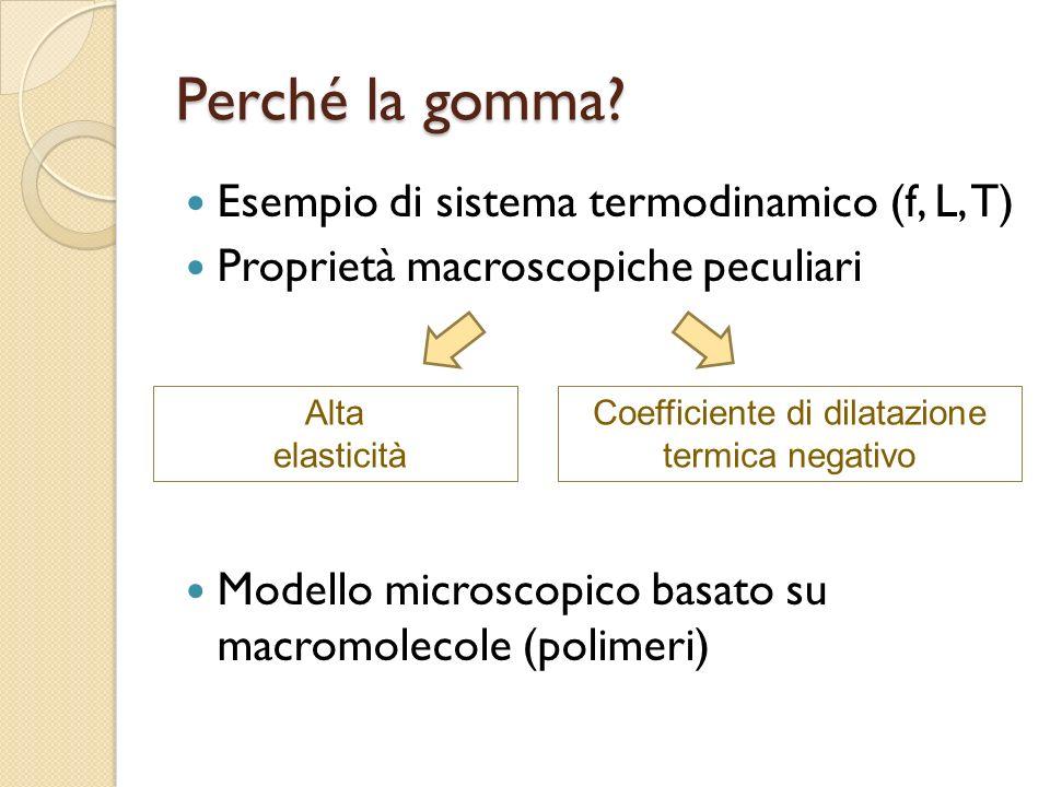 Perché la gomma? Esempio di sistema termodinamico (f, L, T) Proprietà macroscopiche peculiari Modello microscopico basato su macromolecole (polimeri)