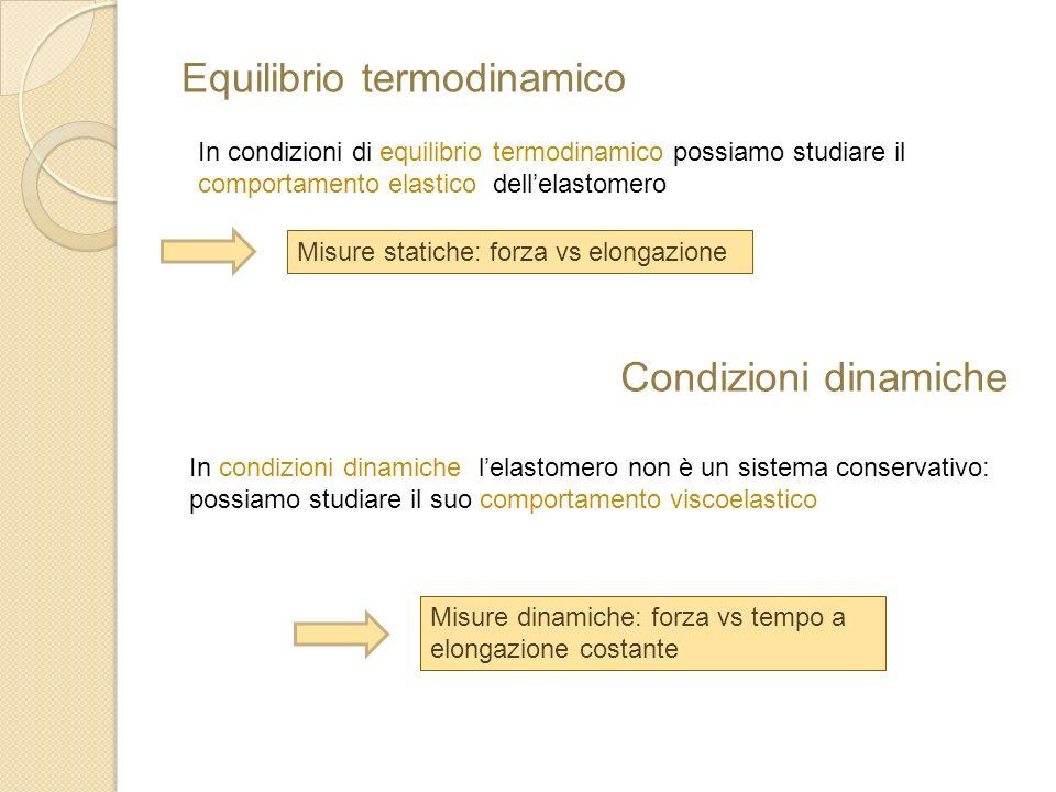 Equilibrio termodinamico In condizioni di equilibrio termodinamico possiamo studiare il comportamento elastico dellelastomero Misure statiche: forza v