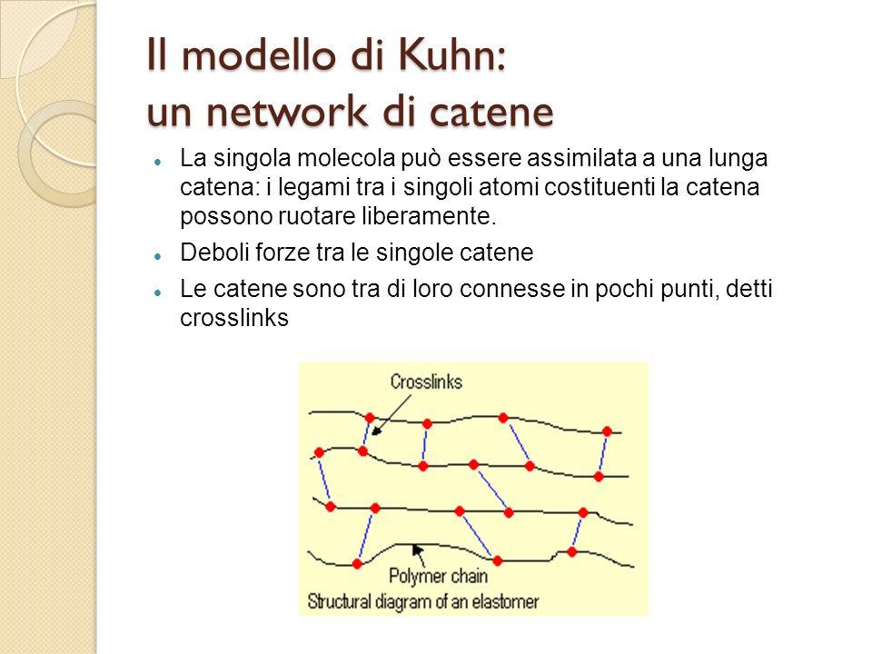 Il modello di Kuhn: un network di catene La singola molecola può essere assimilata a una lunga catena: i legami tra i singoli atomi costituenti la cat
