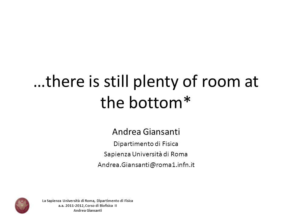 …there is still plenty of room at the bottom* Andrea Giansanti Dipartimento di Fisica Sapienza Università di Roma Andrea.Giansanti@roma1.infn.it La Sa