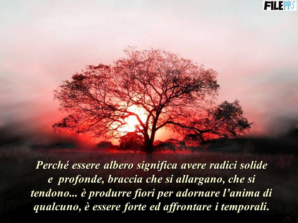 Sii Albero... Albero che dà frutti a chi ha fame, che dà ombra e rinfresca quando il caldo pesante opprime i viandanti della vita.