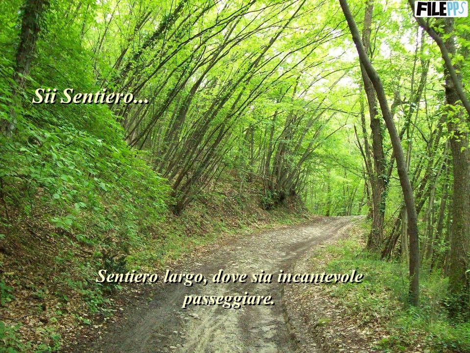 E, per essere ponte, comprendi, perdona e lascia che le persone passino attraverso di te fino allamore infinito.