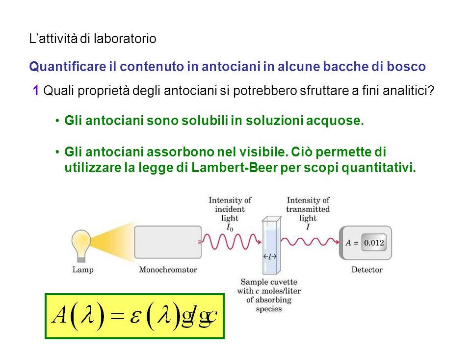 Lattività di laboratorio Quantificare il contenuto in antociani in alcune bacche di bosco 1 Quali proprietà degli antociani si potrebbero sfruttare a