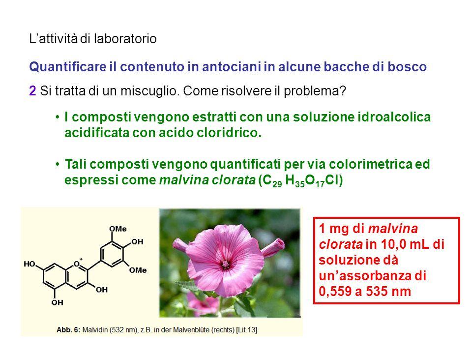 Lattività di laboratorio Quantificare il contenuto in antociani in alcune bacche di bosco 3 Come esprimere il contenuto.