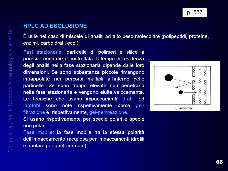 65 HPLC AD ESCLUSIONE È utile nel caso di miscele di analiti ad alto peso molecolare (polipeptidi, proteine, enzimi, carboidrati, ecc.). HPLC AD ESCLU