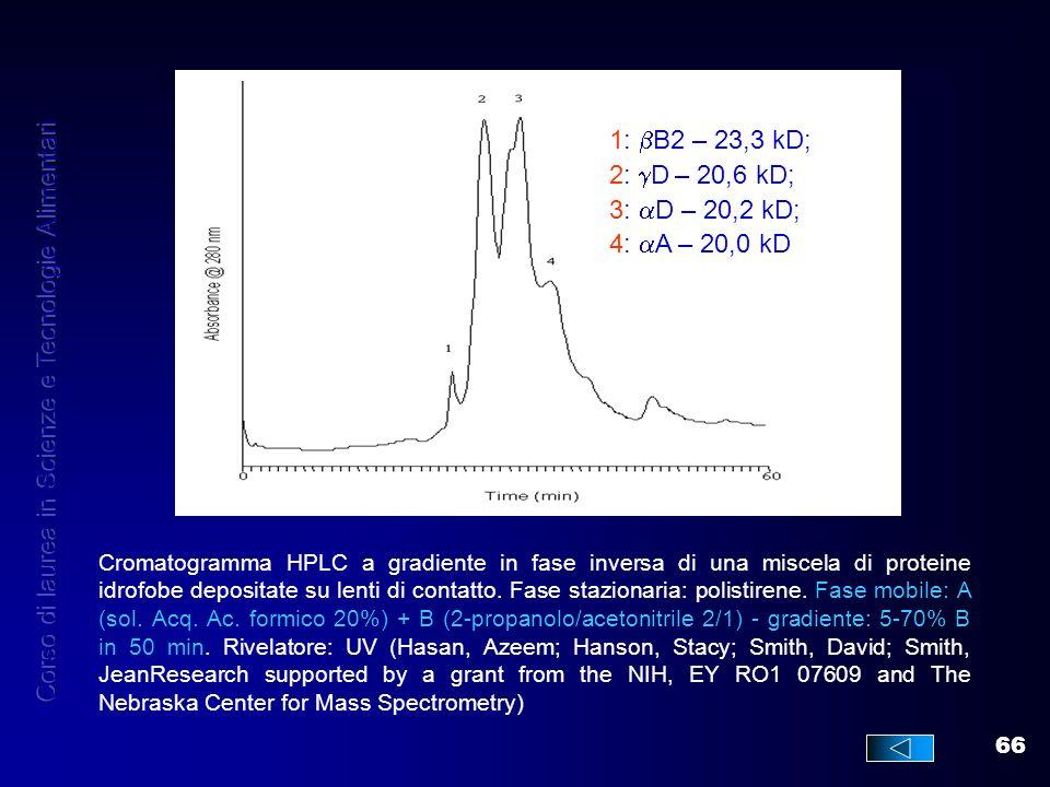 66 Cromatogramma HPLC a gradiente in fase inversa di una miscela di proteine idrofobe depositate su lenti di contatto. Fase stazionaria: polistirene.