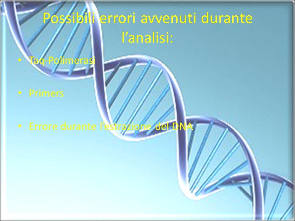 Possibili errori avvenuti durante lanalisi: Taq-Polimerasi Primers Errore durante lestrazione del DNA