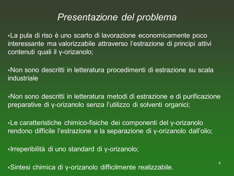 5 Presentazione del problema La pula di riso è uno scarto di lavorazione economicamente poco interessante ma valorizzabile attraverso lestrazione di p