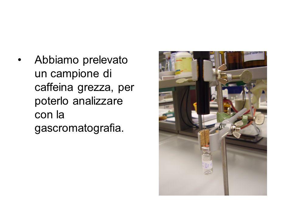 Abbiamo prelevato un campione di caffeina grezza, per poterlo analizzare con la gascromatografia.